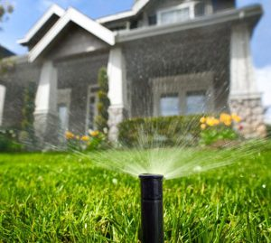 Popup lawn sprinkler head in the foreground and out of focus home in the background.