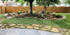 back yard landscaping after property draining added